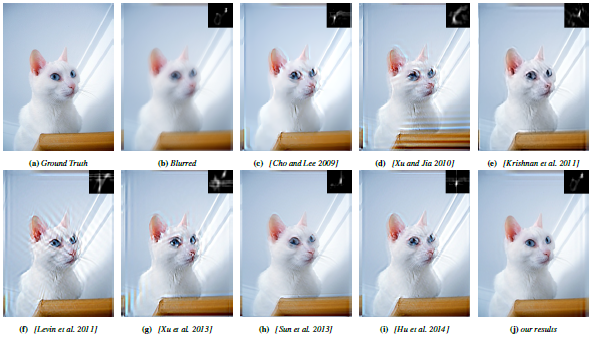 Images of cats