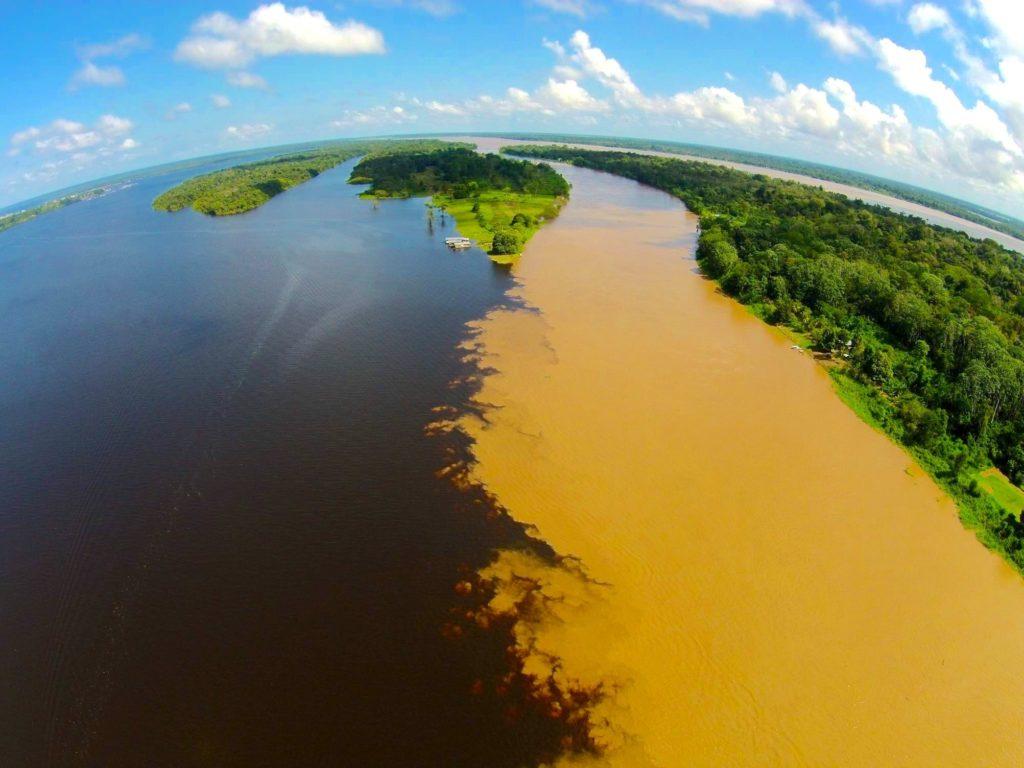 Amazon Rainforest Biodiversity Monitoring Distributed