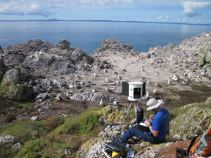 Gigapan camera deployed at Albatross Island
