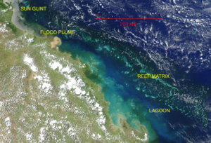 True colour satellite image of part of the GBR, showing features visible from space.