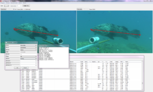 Accurate and precise measurements of fish length from stereo-video imagery using EventMeasure (www.seagis.com.au)