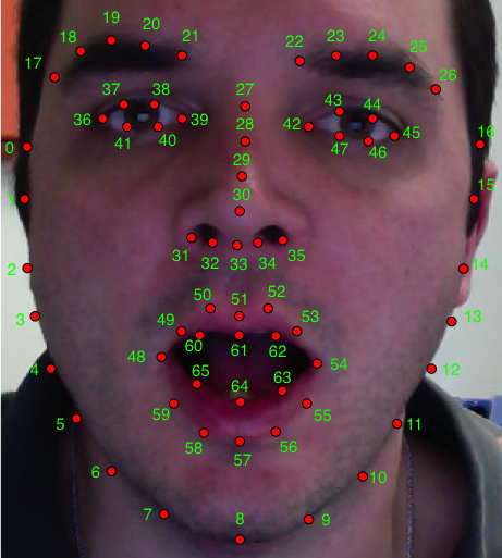 Annotated face