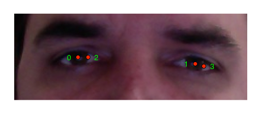 Annotated eyes
