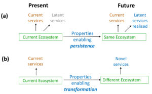 (a) Ecosystems that persist have properties that enable that persistence, allowing future supply of current ecosystem services, and also currently 'latent' services that may be used in the future. (b) Ecosystems that transform have properties that enable that transformation and also the supply of novel services that help people adapt