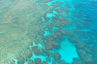 Looking down on a coral reef from the air