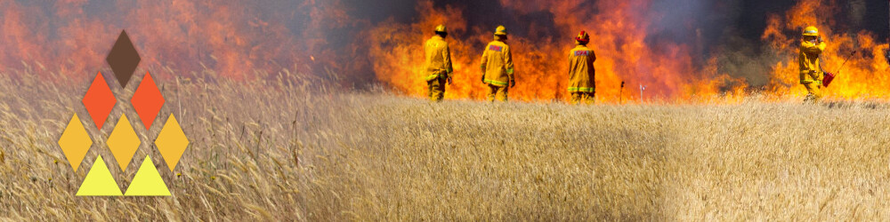 Three firefighters in front of a grassfire