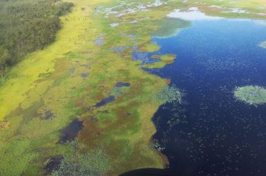 Kakadu wetland from the air