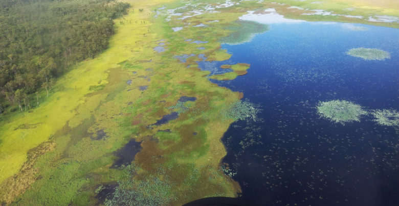Kakadu wetland from the air