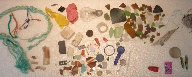 Debris found on a beach