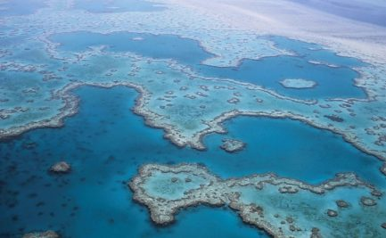 Coral reef viewed from the air