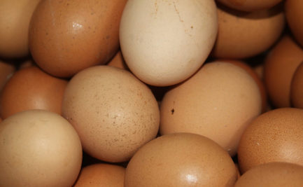 A collection of brown eggs