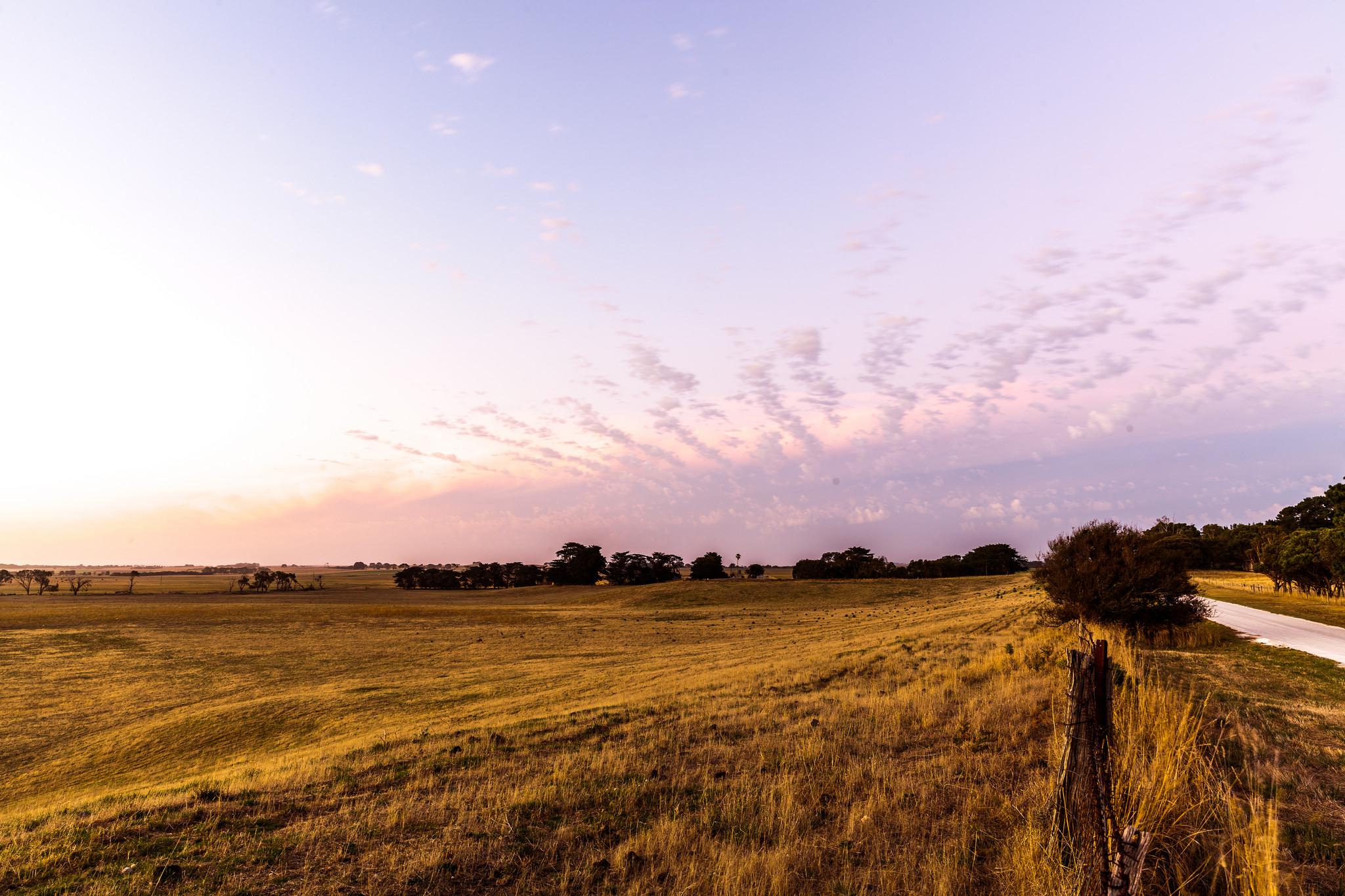 Dry grassland farmland