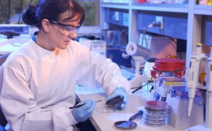 A research holding a petri dish