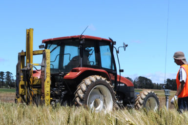 A tractor in a wheat field with sensors