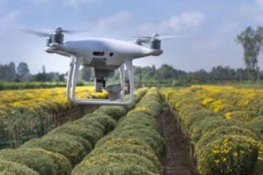 crop drone